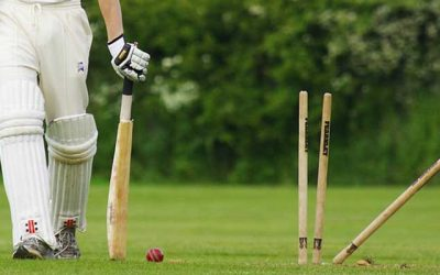 Lynx Partnership with Cricket Shropshire (SCB)